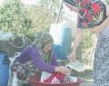 Trabzon'da köylülerin su isyanı