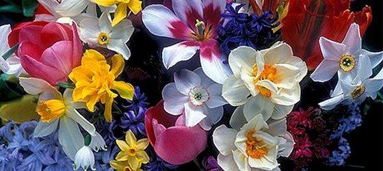 Mahkemeden 'kadına tokat' cezası: Çiçek al!