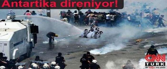 Gezi Direnişi'nde CNN Türk'teki penguen belgeselini kim yayınladı?