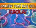 İnsan sağlığının yeni tehtidi. Peki nedir EBOLA?