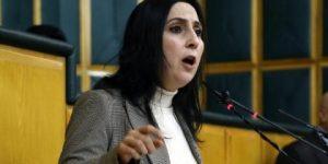 Yüksekdağ: HDP'yi dizayn edemezsiniz