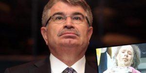 İdris Naim Şahin: Serap'ı öldüren molotofu MİT'çi attı