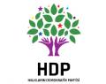 İstanbul HDP'de yeni yönetim belirlendi