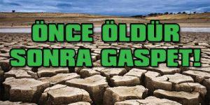 Türkiye'nin tahıl ambarını bitiren proje