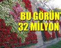 İstanbul'un parası çiçeklere gitti