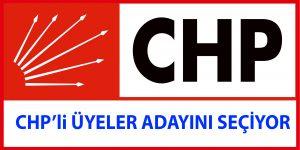 İstanbul 2. Bölgedeki CHP'li Üyeler Adayını Seçiyor.