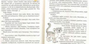 İlkokul çocuklarına skandal kitap