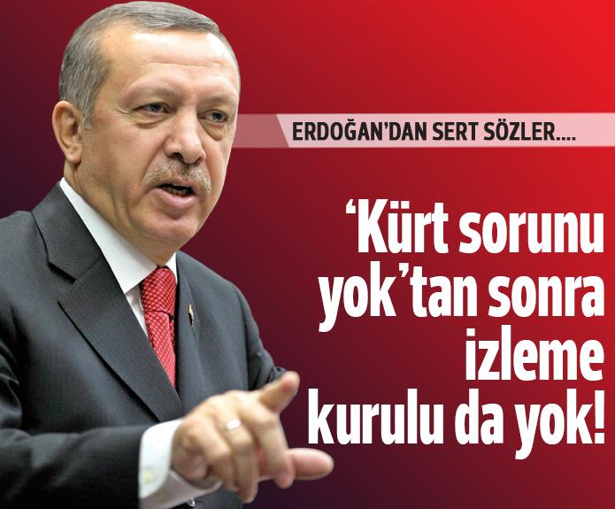 Erdoğan'dan izleme heyeti açıklaması: Ben bu olaya olumlu bakmıyorum