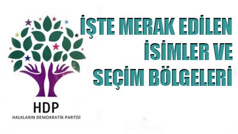 İşte HDP'nin kesin aday listesi.