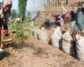 Çiftçi 60-80 Kuruşa Satıyor, Vatandaş 5 Liraya Alıyor