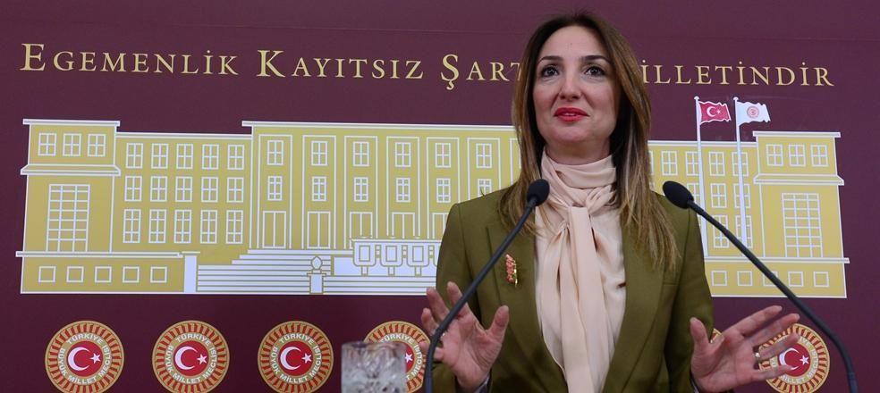 CHP'de Aylin Nazlıaka için kesin ihraç istemi