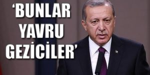 Erdoğan'ın yeni hedefi Cerattepe