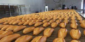 Ankara'da Halk Ekmek fiyatlarında indirim yaptı