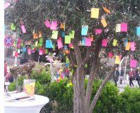 Kadınlar dilek ağacına notlar bıraktı