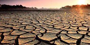 'Türkiye son 9 asrın en kötü kuraklığını yaşıyor'