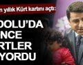 """Ayşe Yıldırım: """"Demirtaş bin yıllık Kürt kartını açtı"""""""
