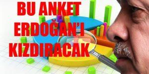 Anketlerden Erdoğan'a sürpriz