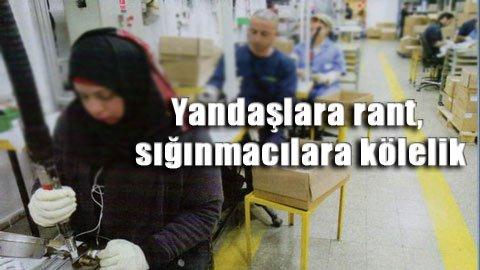 AKP Suriyelileri şirketlere kiralayacak!