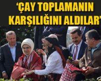 Danıştay'ın 24 üyesini Erdoğan seçecek
