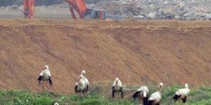 TMMOB Jeoloji Mühendisleri: Yaşam çevremiz yok edilmeye devam ediliyor