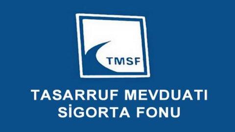 28 şirket TMSF'ye devredildi