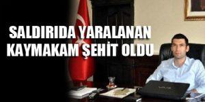 Mardin'den acı haber!