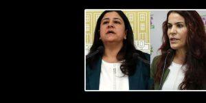 HDP Grup Başkanvekili Çağlar Demirel ve Besime Konca gözaltına alındı