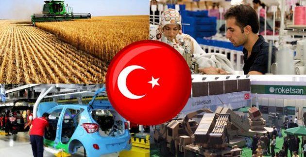 2017'de Türkiye'nin Ekonomik Görünümü Nasıl Olacak?