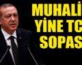 Erdoğan'a '299' ile koruma kalkanı