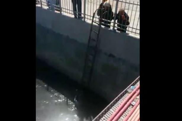 İstanbul'da bir yurttaş zehir saçan dereye düştü