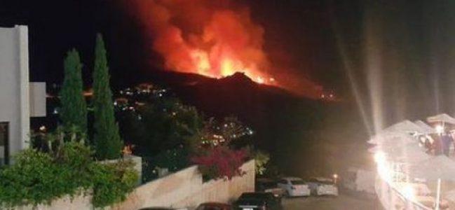 Bodrum'da SİT alanında yangın!