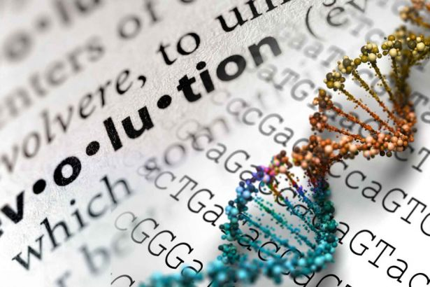 Marmara Üniversitesi Tıp Fakültesi'nde 'evrim' yasağı
