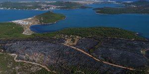 Dünyanın en ileri teknolojisiyle ormanları yakıyorlar!