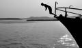 Türkiye'de her yıl 250 kişi balıklama atlama sonucu ölüyor