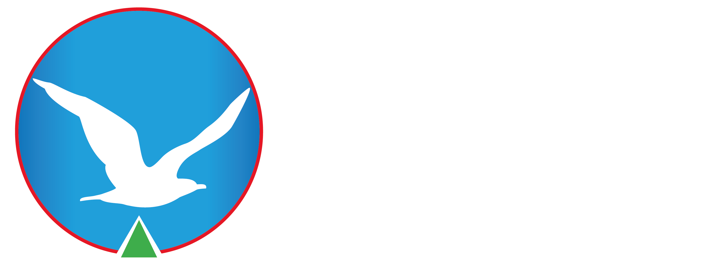 Sarıyer Gözlem