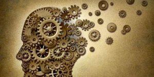 Felsefe ve Edebiyat Söyleşileri