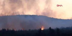 Aydos Ormanı'nda büyük yangın