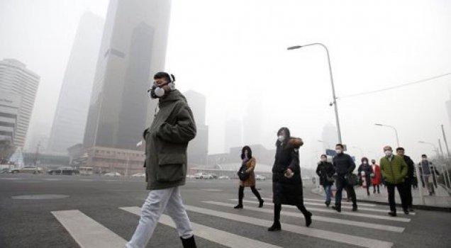 Yeni araştırma: Hava kirliliği zekayı etkiliyor