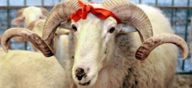 Kurban bayramı etleri ne kadar saklanabilir?