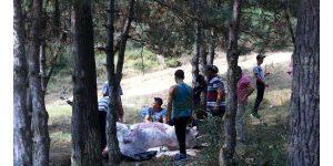 Kurbanlıklarını Ormanda kestiler