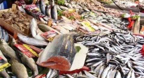 Korkutan açıklama geldi: Balıkta da tehlike var