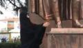 Çarşaflı provokasyon! Atatürk Anıtı'na baltalı saldırı