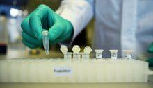 Dünya Sağlık Örgütü, Rusya'nın 9 koronavirüs aşısını onayladı