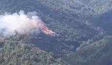 Maden mahallesin'de yine orman yangını!